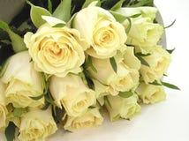 Rosebuds crema Fotografia Stock Libera da Diritti