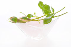 Rosebuds isolated on a white background for spa Royalty Free Stock Photography