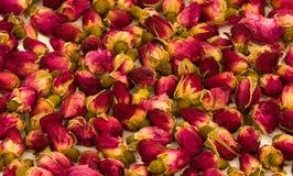 Rosebudshintergrund Stockfotografie
