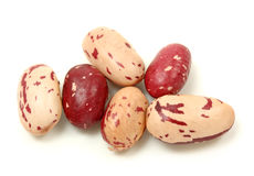 Rosecoco bean Royalty Free Stock Photos