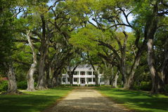 Free Rosedown Plantation Home Royalty Free Stock Image - 13811436