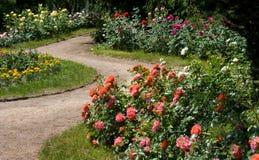 Rosegarden Imagen de archivo