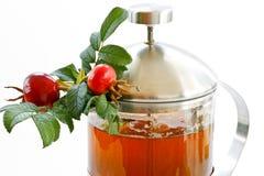 rosehip τσάι Στοκ φωτογραφία με δικαίωμα ελεύθερης χρήσης