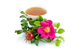 rosehip τσάι Στοκ εικόνες με δικαίωμα ελεύθερης χρήσης