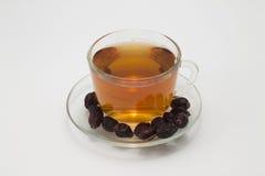 Rosehip τσάι στοκ φωτογραφίες