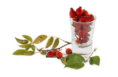 Rosehip berries in a glass. Isolated on white background Royalty Free Stock Photo