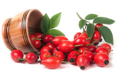 Rosehip berries in a wooden bowl  on white background Stock Image