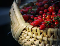 Rosehip crop in a wattled basket Royalty Free Stock Photos