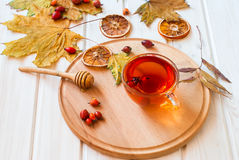 Rosehip drink with fresh berries in a glass cup Royalty Free Stock Image