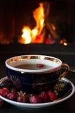 Rosehip herbata przed huczenie ogieniem w pożarniczym miejscu obraz royalty free