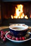 Rosehip herbata przed huczenie ogieniem w pożarniczym miejscu zdjęcie royalty free
