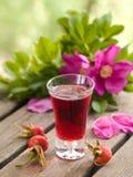 Rosehip liquor Stock Photography