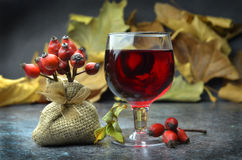 Rosehip liquor. With rose fruits Stock Images