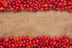 Rosehip lying on sackcloth Stock Photography