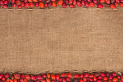 Rosehip lying on sackcloth Royalty Free Stock Image