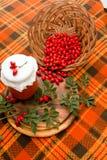Rosehip marmalade. Stock Photos