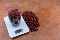 Rosehip in a measuring cup on electronic scales with a copy spac. Rosehip in a transparent measuring cup weighed on white electronic weighing The weight of 500 Royalty Free Stock Photos