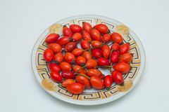 Rosehip in the plate . Top view of rose hips in bowl  on white . Rose hip. On a white background Stock Photography