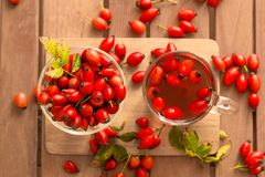 Rosehip. A real explosion of color and odor Stock Image