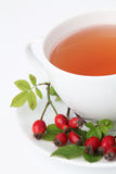 Rosehip tea Stock Image