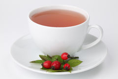 Rosehip tea Stock Photo