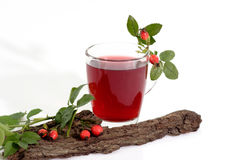 Rosehip-Tea Stock Images