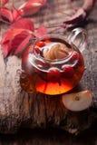 Rosehip tea and apples Stock Photos