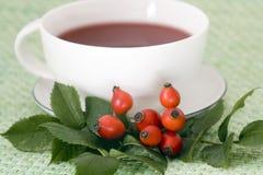Rosehip tea cup royalty free stock photos