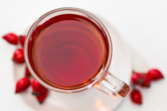 Rosehip tea /  tisane Stock Photography