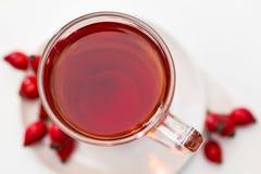 Rosehip tea /  tisane. Glass of rosehip tea isolated on white background.  Tisane Stock Photography