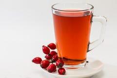 Rosehip tea /  tisane. Glass of rosehip tea isolated on white background.  Tisane Royalty Free Stock Image