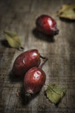 Rosehip vert. On dark wood stock image