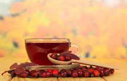 Rosehips and  cup  tea on  background  autumn leaves. Royalty Free Stock Image