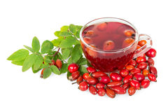 Rosehips and  cup  tea isolated on white background. Stock Images