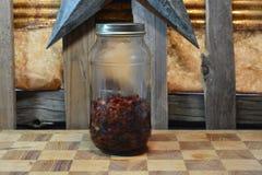 Rosehips dehidratação Fotografia de Stock Royalty Free