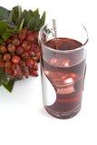rosehips herbaciani Zdjęcia Royalty Free
