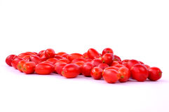 Rosehips isolated Royalty Free Stock Photo