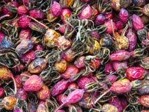 Rosehips secados Close-up do Briar Baga do outono Imagens de Stock Royalty Free