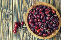 Rosehips in a wooden bowl on a wooden surface. Rosa canina hips. Close-up, horizontal Stock Images