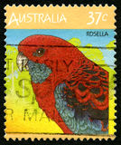 Rosella Australian Postage Stamp fotos de stock