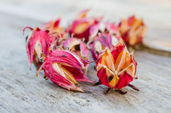 Roselle dry pile on the table. Royalty Free Stock Photo