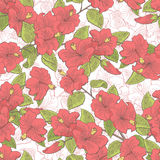 Roselle flower branch graphic color seamless pattern sketch illustration Stock Photo
