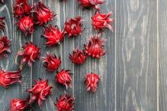 roselle frais Photo libre de droits