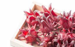 Roselle fruit in wood box isolated Royalty Free Stock Photography