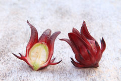 Roselle fruits Royalty Free Stock Photography