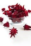 Roselle [Hibiscus sabdariffa] Royalty Free Stock Photos
