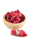 Roselle isolated on white background.  Stock Photo