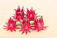 Roselle with wooden surface Stock Photography