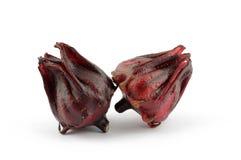 Rosellebloemen Royalty-vrije Stock Afbeelding