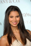 Roselyn Sanchez Obraz Stock